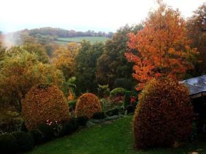 topiaires d'automne