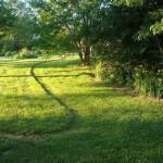 effet sur pelouse